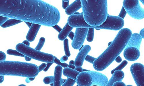 Чтобы уменьшить негативное воздействие антибиотиков на организм, следует принимать их только в сочетании с пробиотиками