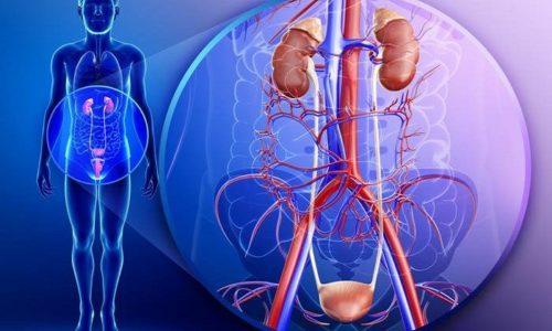 Витафон имеет широкую область применения. Прибор назначается при болезнях органов мочеполовой системы