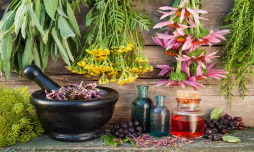 При терапии цистита применяют травяные чаи, отвары и настои