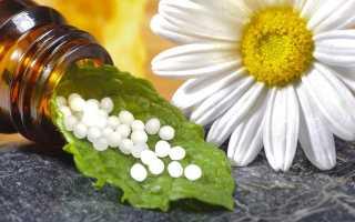Применение гомеопатии для лечения цистита