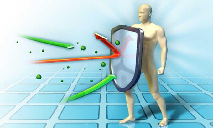 Снижение иммунитета способствует частому обострению хронической формы заболевания