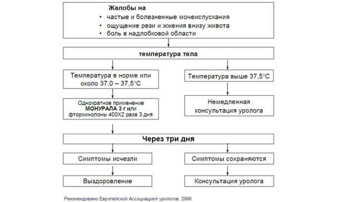 Схема лечения цистита. Врач подбирает препарат в зависимости от индивидуальных особенностей организма пациента, от его веса и возраста