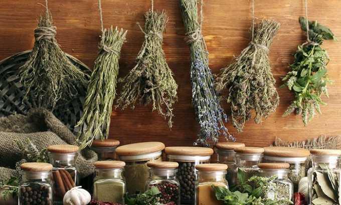 Сбор для ванны готовят из листьев березы и смородины черной, фиалки трехцветной, чабреца, листьев эвкалипта, травы душицы