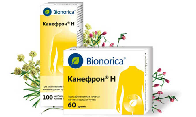 При лечении цистита эффективны фитопрепараты, такие как Канефрон
