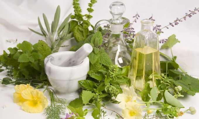 Во время терапии средство нужно готовить ежедневно, т. к. свежие растительные лекарства обладают большей пользой
