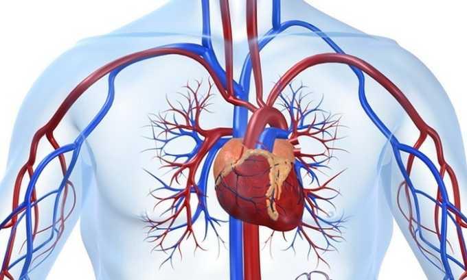 При распространении метастаз на мочеполовую систему нарушается кровообращение