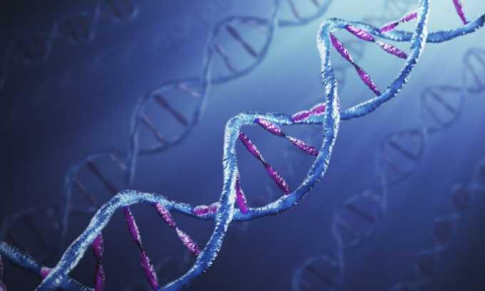 Генетическая предрасположенность - физиологическая причина частого мочеиспускания у женщин ночью