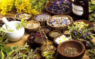 Какие травы можно принимать при цистите у женщин?