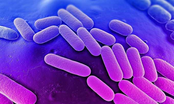 Бактериальные инфекции могут быть причиной возникновения буллезного цистита