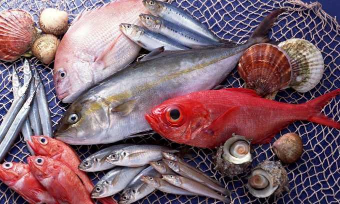 Рыба запрещена при остром цистите