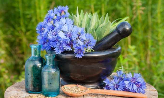 Настой из цветков василька снимает неприятные симптомы