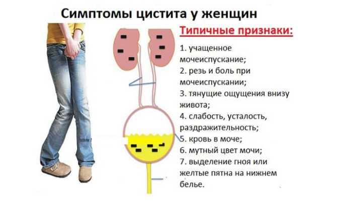 Первые симптомы цистита у женщин появляются по причине респираторной вирусной инфекции, отсутствия гигиены после близости, в начале половой жизни, при смене полового партнера и с началом менструации