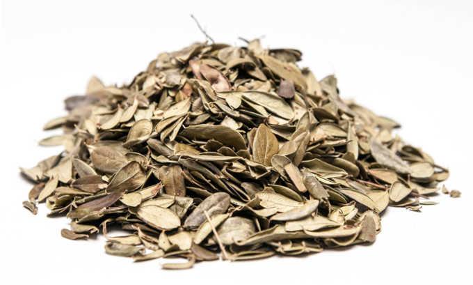 Для отвара брусничных листьев нужно 2 ст. л. сухих листьев брусники