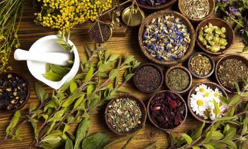 Если почечный чай дополнить различными лекарственными растениями, то он приобретает улучшенные свойства