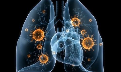 Воспалительные процессы в мочевом пузыре могут бывать обусловлены проникновением микобактерий туберкулеза