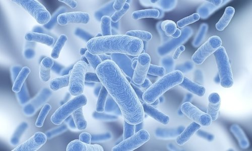 Чаще всего к урологам приходят женщины, так как бактерии намного быстрее проникают в их мочевой пузырь из-за короткой и воронкообразной уретры