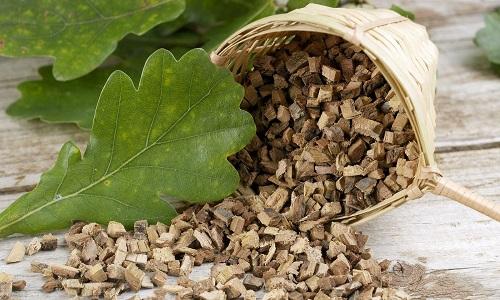 При цистите часто используется и дубовая кора: в ней содержится большое количество дубильных веществ, благотворно влияющих на раздраженную слизистую мочевого пузыря