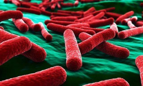 Бактерии, содержащиеся на слизистой пениса, становятся возбудителями цистита медового месяца в условиях ослабленного иммунитета женщины