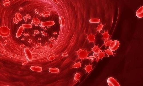 Средства, имеющие порошкообразную форму и применяющиеся при воспалении мочевого пузыря, обладают свойством быстро всасываться в кровь