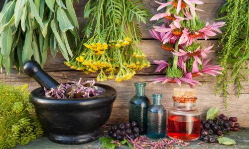 Во время терапии хронического цистита применяют средства народной медицины