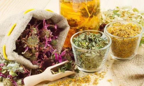 Травы - это база лечения воспаления мочевого пузыря