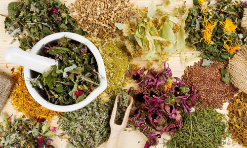 Многие народные рецепты противопоказаны при вскармливании грудью