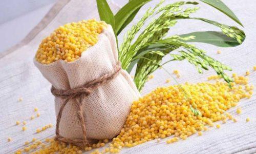 При правильном употреблении пшено помогает ускорить процесс выздоровления