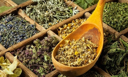 При цистите хорошо помогает сбор из брусничных листьев, цветков календулы, льняных семян, травы трехцветной фиалки и любистока