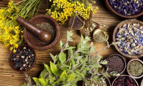 Назначать ли антибиотики, должен решать врач, но медики почти всегда рекомендуют использовать в лечении травы от цистита: или в составе комплексной терапии, или как самостоятельное средство